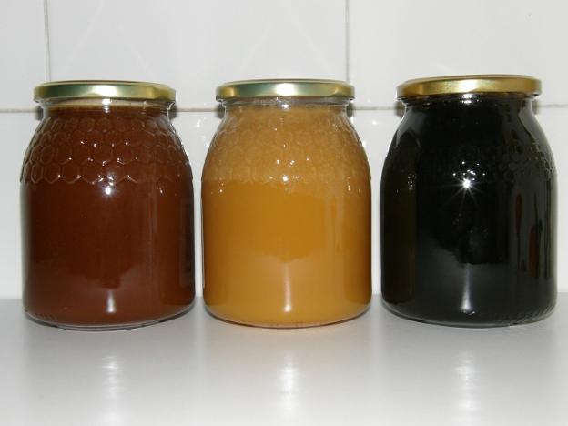 Diferentes tipos de mieles de Cantabria./